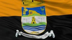Ravinstadsflagga, Puerto Rico, Closeupsikt Royaltyfri Illustrationer