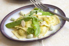 Ravioli Royalty Free Stock Photography