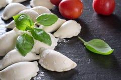 Ravioli avec la tomate et le Basil photographie stock libre de droits