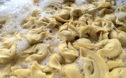 Ravioli Royalty Free Stock Images