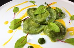 Ravioli dos espinafres com os duxelles do cogumelo servidos com molho da abóbora e decorados com azeda vermelha da veia fotografia de stock