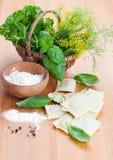 Ravioli faits maison de pâtes avec le basilic frais Images stock