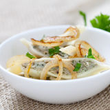Ravioli with onions Stock Photography