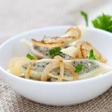 Ravioli with onions Stock Photography
