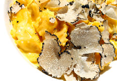 Ravioli pasta with black truffle Royalty Free Stock Photos