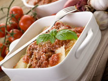 Ravioli with ragout sauce Royalty Free Stock Photography