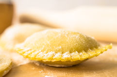 Ravioli raw Royalty Free Stock Photos