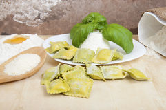 Ravioli with ricotta and basil Royalty Free Stock Images