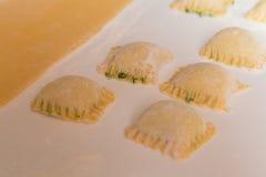 Ravioli som är välfylld med ost och spenat Fotografering för Bildbyråer