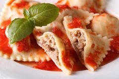 Ravioli stuffed with meat in tomato sauce, horizontal Royalty Free Stock Photo