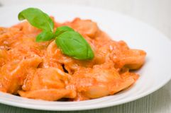 Ravioli in tomato-cream sauce Stock Image