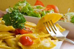 Raviolii en salade royalty-vrije stock foto