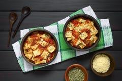 Raviolis cocidos con la salsa de tomate Fotos de archivo libres de regalías