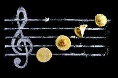 Raviolis - cocinar música Imagen de archivo libre de regalías
