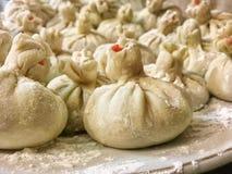 Raviolis y bolas de masa hervida rusas de la harina, de la carne y de las especias Fotos de archivo libres de regalías