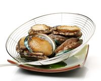 Raw abalone stock image