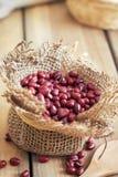 Raw adzuki red beans Royalty Free Stock Photos