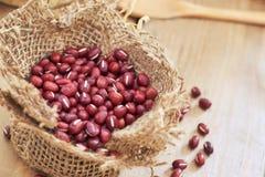 Raw adzuki red beans Stock Images
