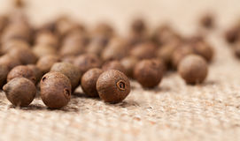 Raw allspice pepper aroma seeds close up texture Royalty Free Stock Photography