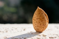 Raw almond, background.  Main ingredient for nougat Sicilian. Raw almond, with skin and rind, copy space. Main ingredient for nougat Sicilian royalty free stock photography