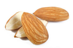 Raw almond nuts on white background Stock Images
