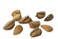 Raw almonds. Whit a natural coat, over white Royalty Free Stock Image
