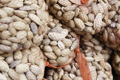 Raw almonds in shell Royalty Free Stock Images
