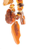 The raw amber from coast of the Baltic sea Stock Photos