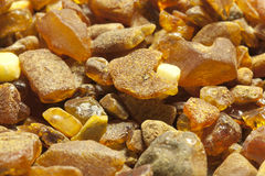 Raw amber Stock Photography