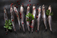 Raw anchovies. Presenting series anchovy crude above background black stone Stock Image
