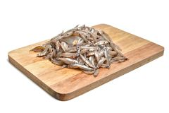 Raw anchovies. Wooden boards, white background Royalty Free Stock Image