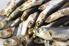 Raw anchovies ready to Cook Stock Photos