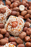 Raw Apricot Squares Stock Photos