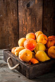 Raw apricots in wooden box. Summer fruits. Fresh raw organic farm apricots in a wooden box, a tray, on an old wooden rustic table. Copy space Royalty Free Stock Photos