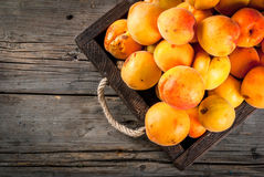 Raw apricots in wooden box. Summer fruits. Fresh raw organic farm apricots in a wooden box, a tray, on an old wooden rustic table. Copy space top view Royalty Free Stock Photos
