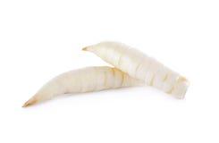 Raw arrow-root or maranta on white background Stock Photos