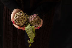 Raw Artichokes Royalty Free Stock Images