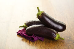 Raw aubergines Stock Photography