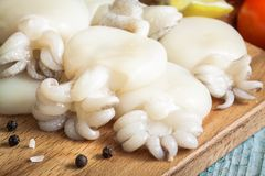 Raw babies cuttlefish  on a cutting board closeup Royalty Free Stock Photography