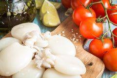 Raw babies cuttlefish  with tomatoes closeup Royalty Free Stock Photo