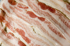 Raw bacon strips on paper towel for microwave Royalty Free Stock Photo