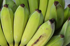 Raw bananas Royalty Free Stock Photography