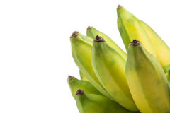 Raw bananas isolated Royalty Free Stock Image