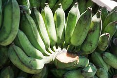 Raw bananas. There are many raw bananas in the market Royalty Free Stock Image