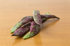 Raw bean pods Stock Image