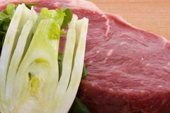 Raw beef and fennel Royalty Free Stock Photo