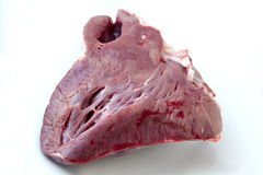 Raw beef  heart - meat Royalty Free Stock Images
