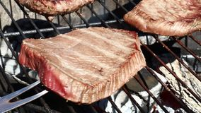 Raw beef steaks cooking on barbecue grill stock video footage