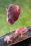 Raw beef steaks. Raw beef steak on garden grill Royalty Free Stock Photos