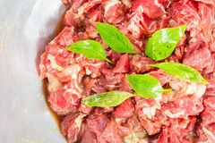 Raw beef. With sweet basil Royalty Free Stock Photography